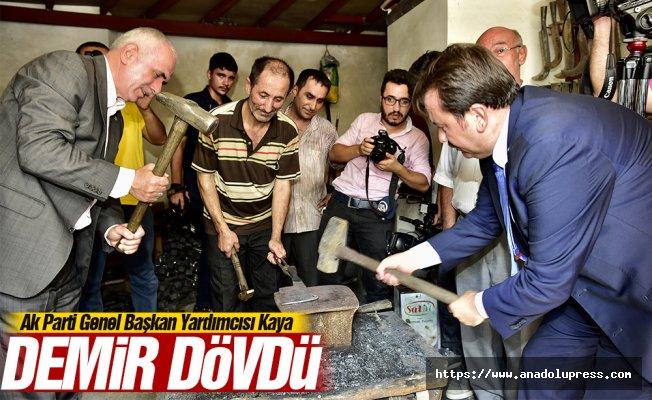 Ak Parti Genel Başkan Yardımcısı Kaya demir dövdü