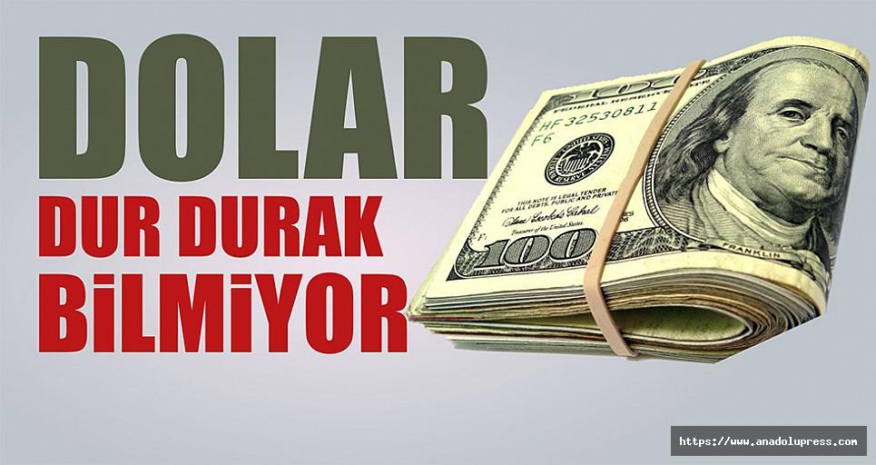 Dolar da yeni rekor… Merkez bankası açıklama yaptı!