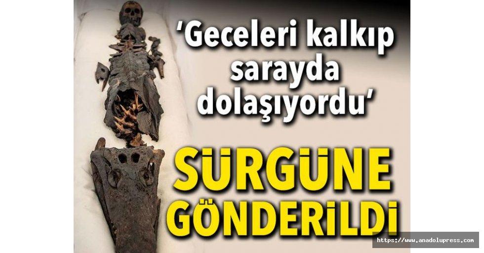 İstanbul'daki Çocuk Kafalı Mumya Timsah İlk Kez Görüntülendi