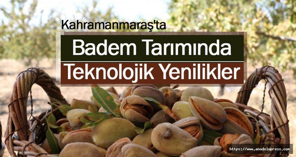 Kahramanmaraş'ta Badem Tarımında Teknolojik Yenilikler