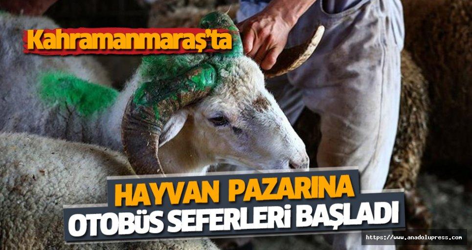 Kahramanmaraş'ta Hayvan Pazarına Otobüs Seferleri Başladı