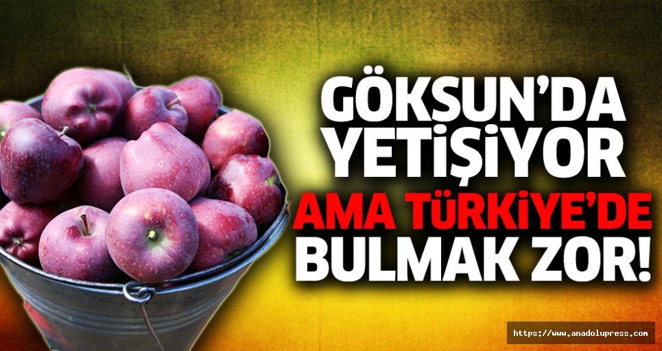 Göksun'da yetişiyor ama Türkiye'de bulmak zor!