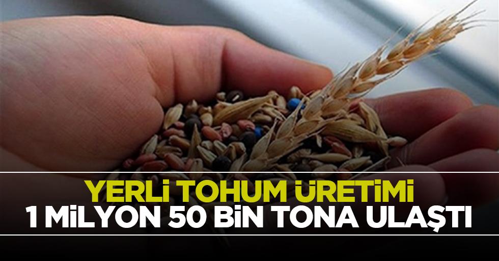 Yerli tohum üretimi 1 milyon 50 bin tona ulaştı