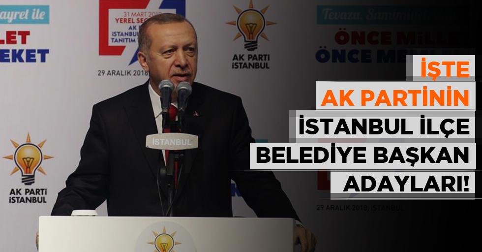 Başkan Erdoğan İstanbul adaylarını açıkladı!