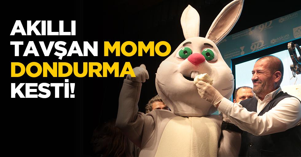 Akıllı tavşan Momo dondurma kesti!
