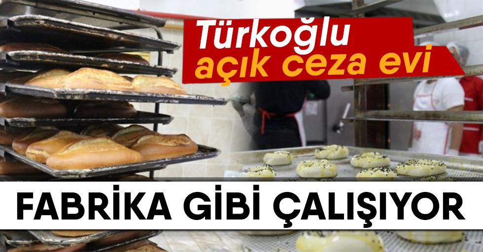 Türkoğlu Açık Cezaevi Fabrika Gibi Çalışıyor
