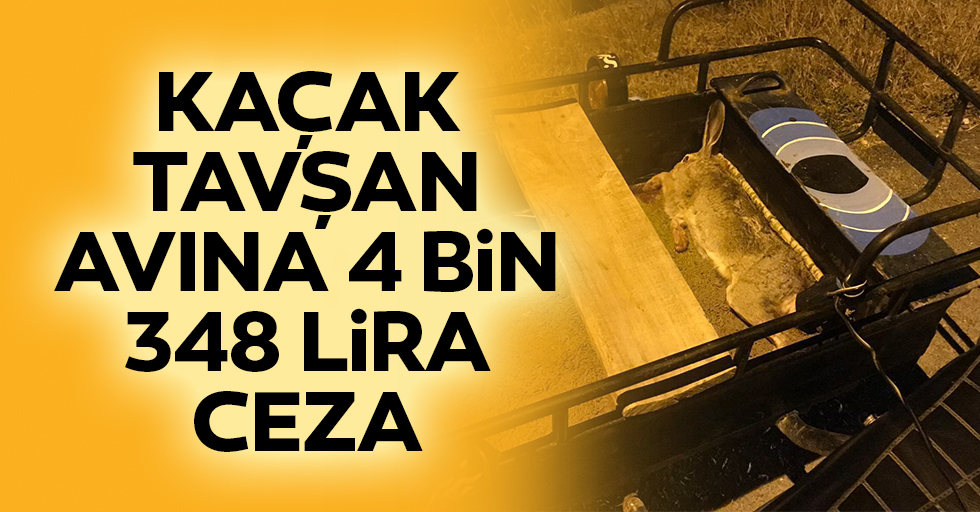 Kaçak Tavşan Avına 4 Bin 348 Lira Ceza