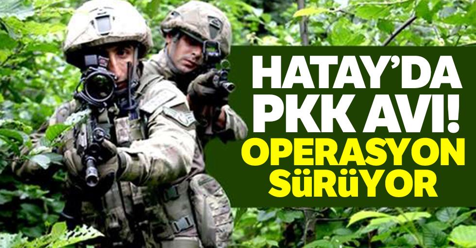 Hatay'da PKK avı