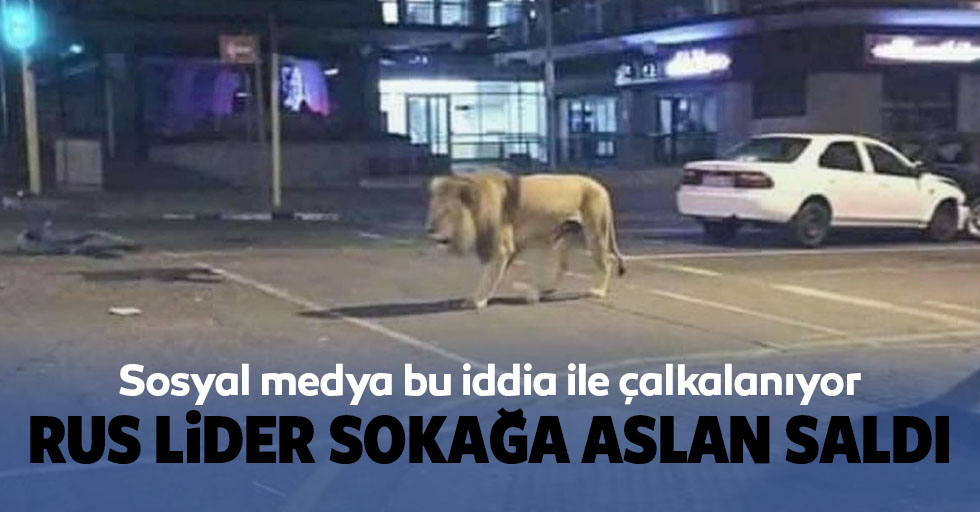 Putin'in insanların evde kalması için 800 aslanı sokağa saldığı iddiası sosyal medyayı karıştırdı