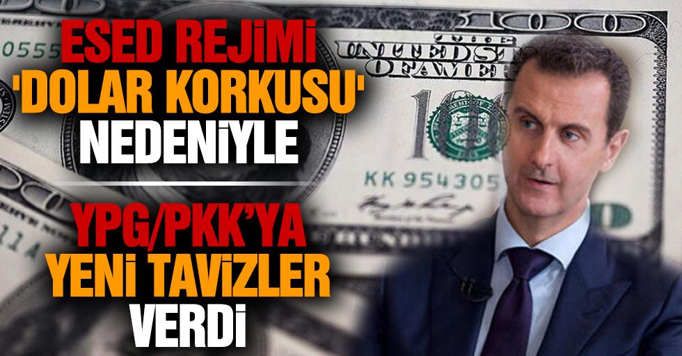 Esed rejimi 'dolar korkusu' nedeniyle YPG/PKK'ya yeni tavizler verdi