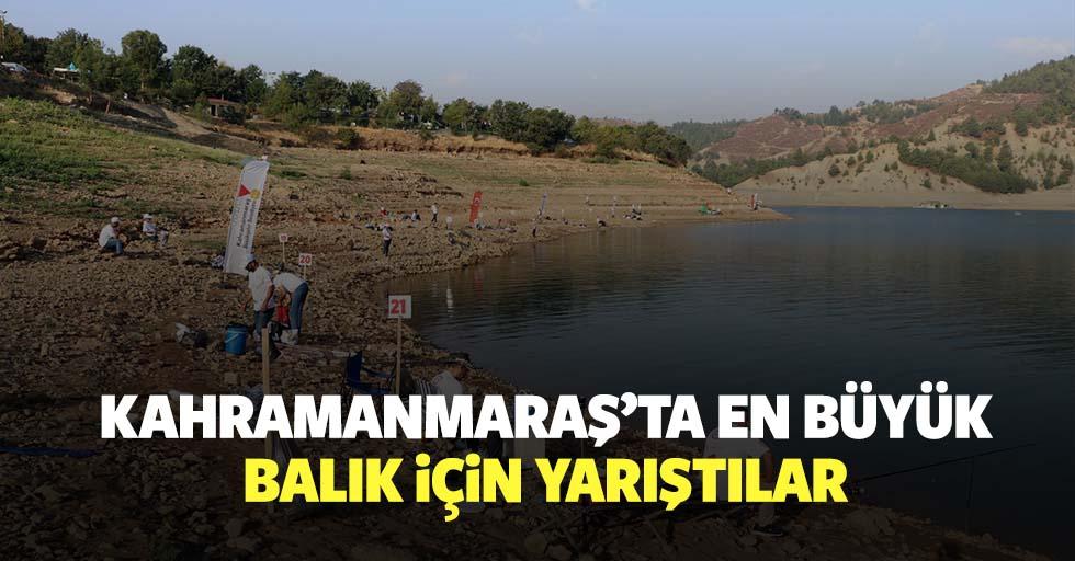 Kahramanmaraş'ta en büyük balık için yarıştılar