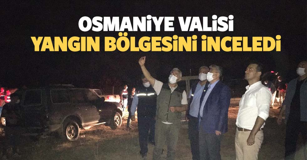 Osmaniye valisi yangın bölgesini inceledi
