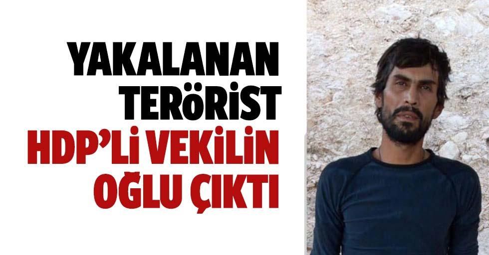 Eski HDP'li vekilin terörist çocuğu yakalandı!