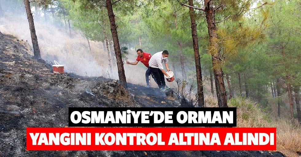 Osmaniye'de orman yangını kontrol altına alındı