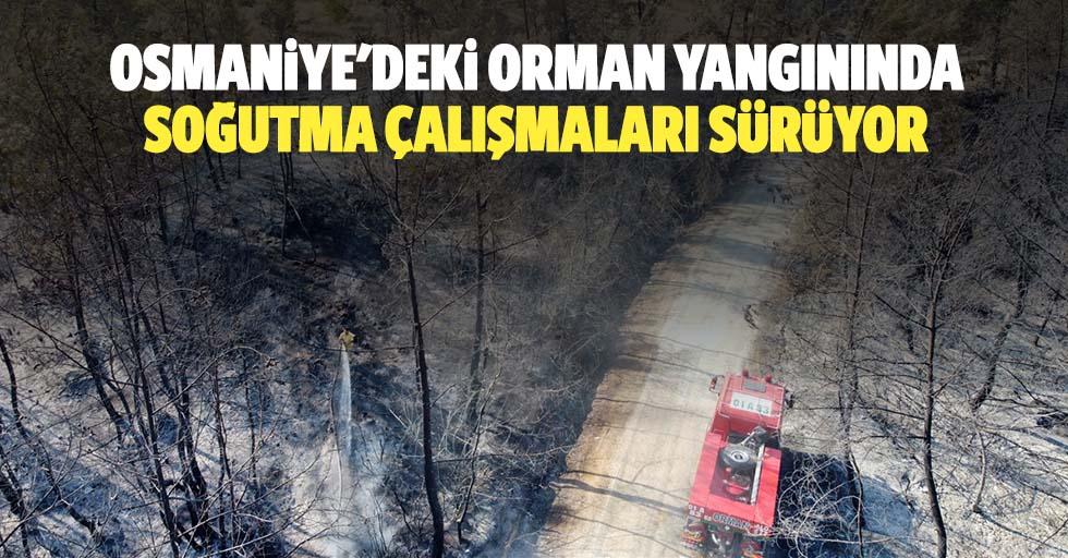 Osmaniye'deki orman yangınında soğutma çalışmaları sürüyor