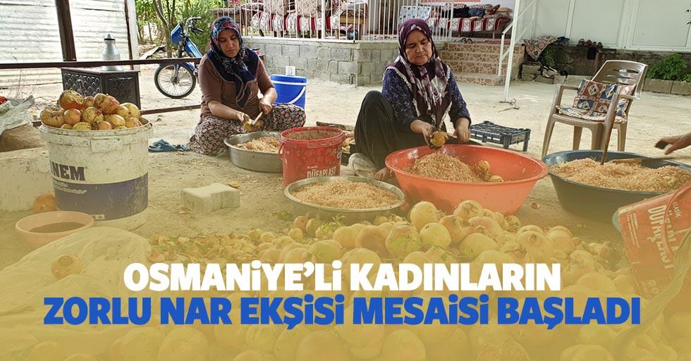 Osmaniye'li kadınların zorlu Nar Ekşisi mesaisi başladı