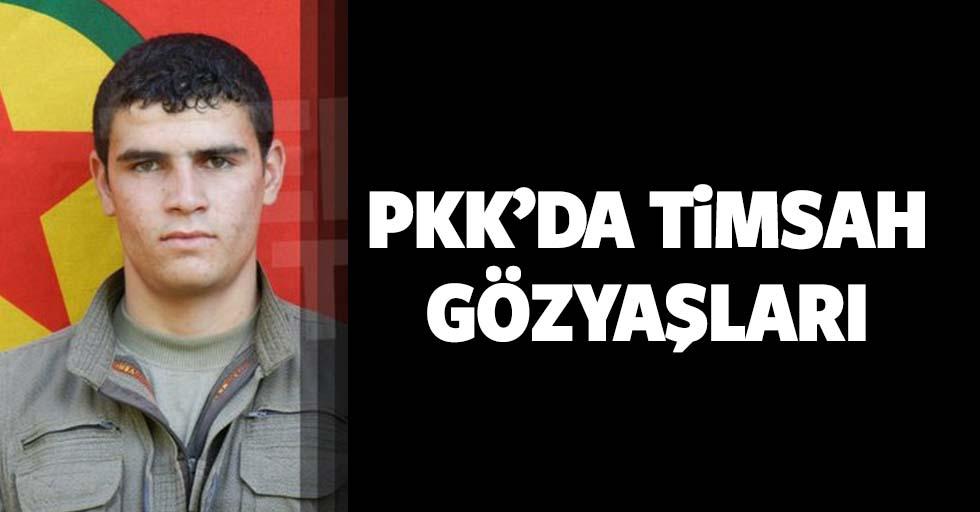 Terör örgütü PKK'dan timsah gözyaşları