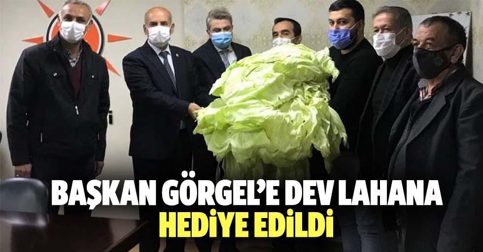 Başkan Görgel'e dev lahana hediye edildi