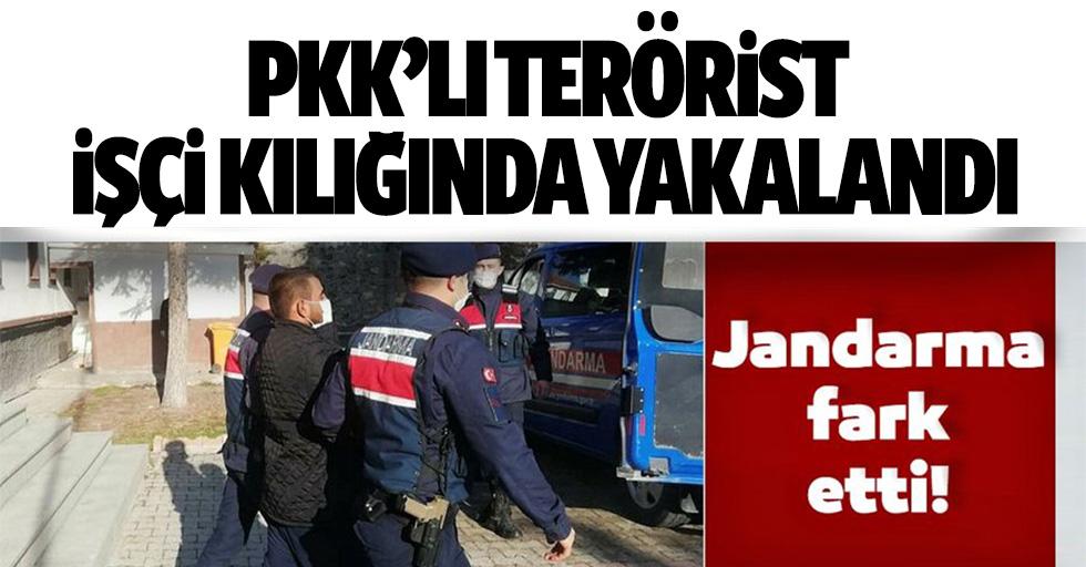 PKK'lı terörist işçi kılığında yakalandı