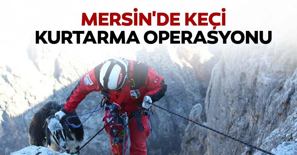 Mersin'de keçi kurtarma operasyonu
