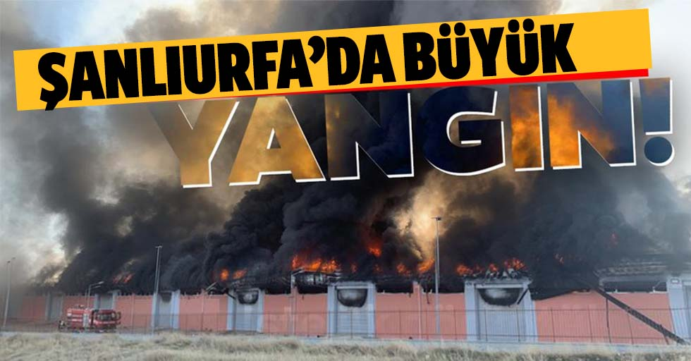 Şanlıurfa'da büyük yangın!