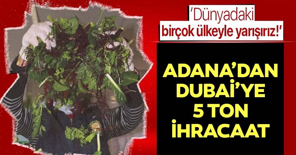 Adana'dan Dubai'ye 5 ton ihraç ediliyor!