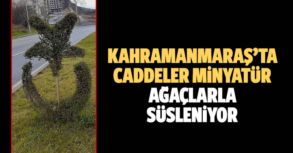Kahramanmaraş'ta Caddeler Minyatür Ağaçlarla Süsleniyor