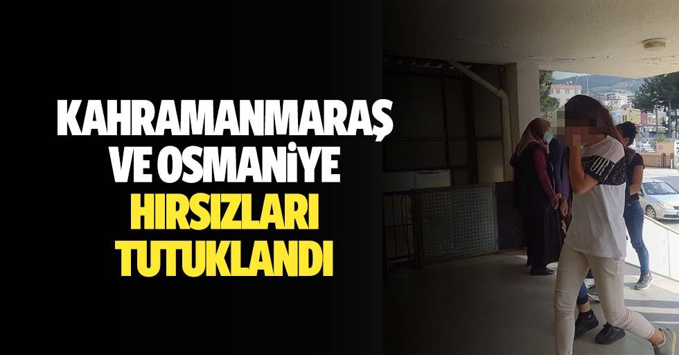 Kahramanmaraş ve Osmaniye hırsızları tutuklandı