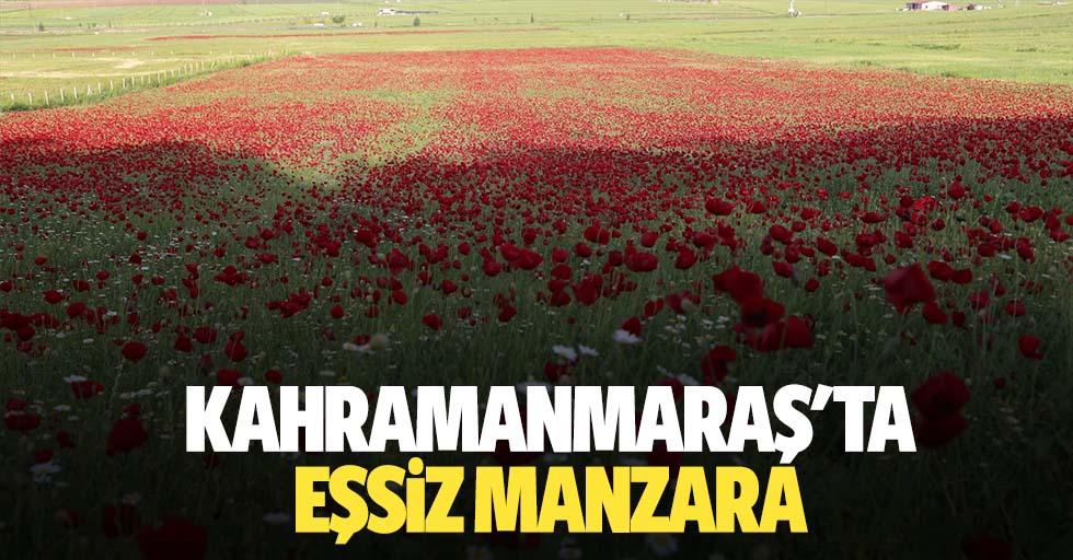 Kahramanmaraş'ta eşsiz manzara