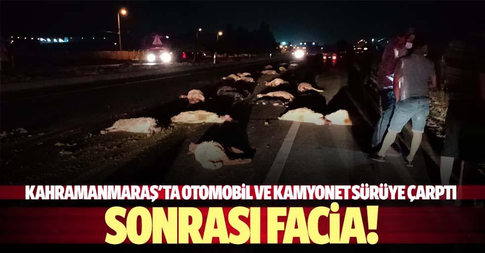 Kahramanmaraş'ta otomobil ve kamyonet sürüye çarptı