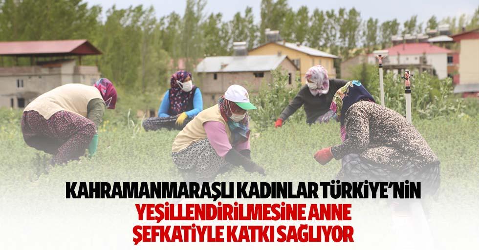 Kahramanmaraşlı Kadınlar Türkiye'nin Yeşillendirilmesine Anne Şefkatiyle Katkı Sağlıyor