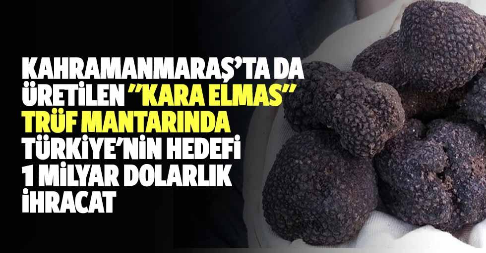 """Kahramanmaraş'ta da üretilen """"kara elmas"""" trüf mantarında Türkiye'nin hedefi 1 milyar dolarlık ihracat"""