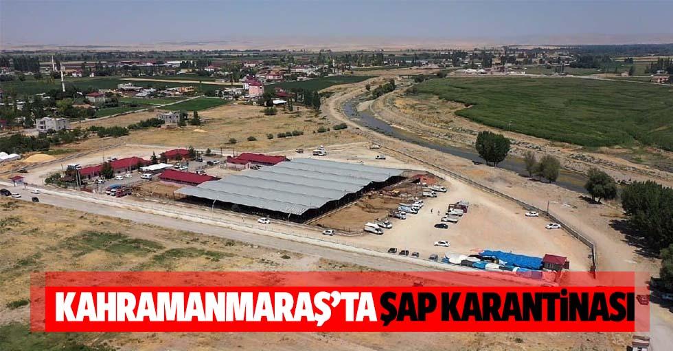 Kahramanmaraş'ta şap karantinası