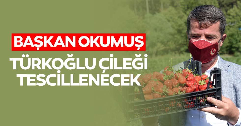Başkan Okumuş, 'Türkoğlu çileği tescillenecek'