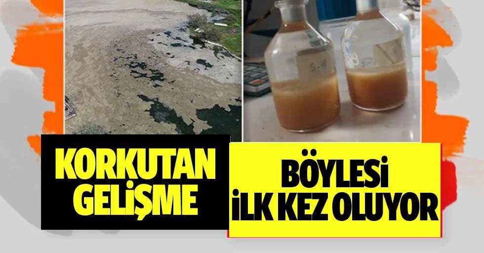 Prof. Dr. Salihoğlu'ndan müsilaj açıklaması: Bu derece durumla hiç karşılaşmamıştık
