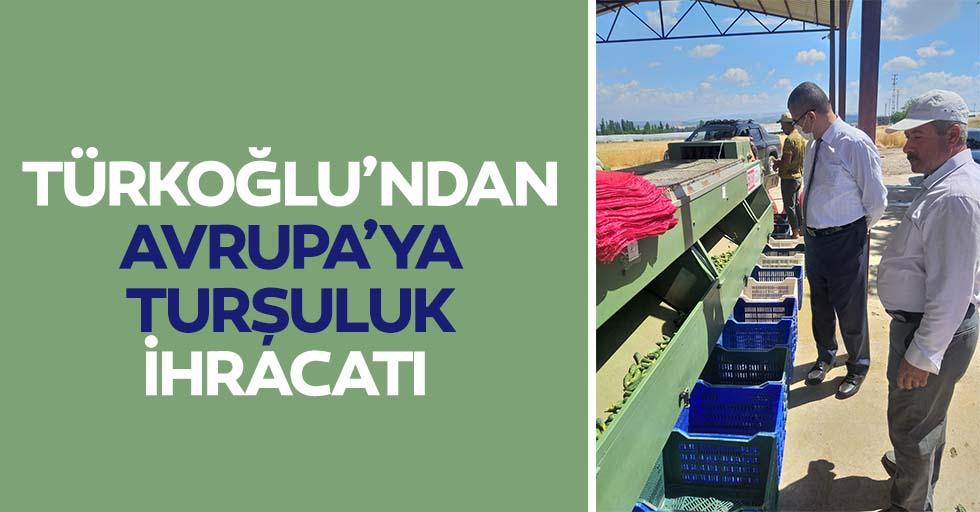 Türkoğlu'ndan Avrupa'ya turşuluk ihracatı