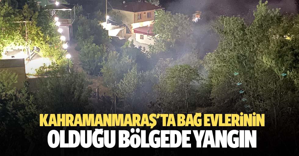 Kahramanmaraş'ta bağ evlerinin olduğu bölgede yangın