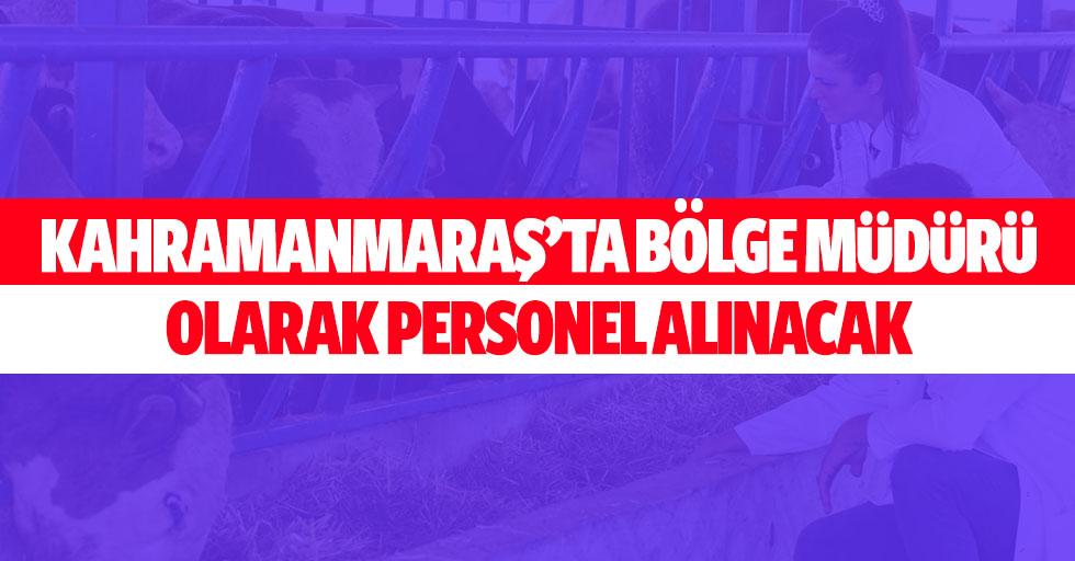 Kahramanmaraş'ta bölge müdürü olarak personel alınacak
