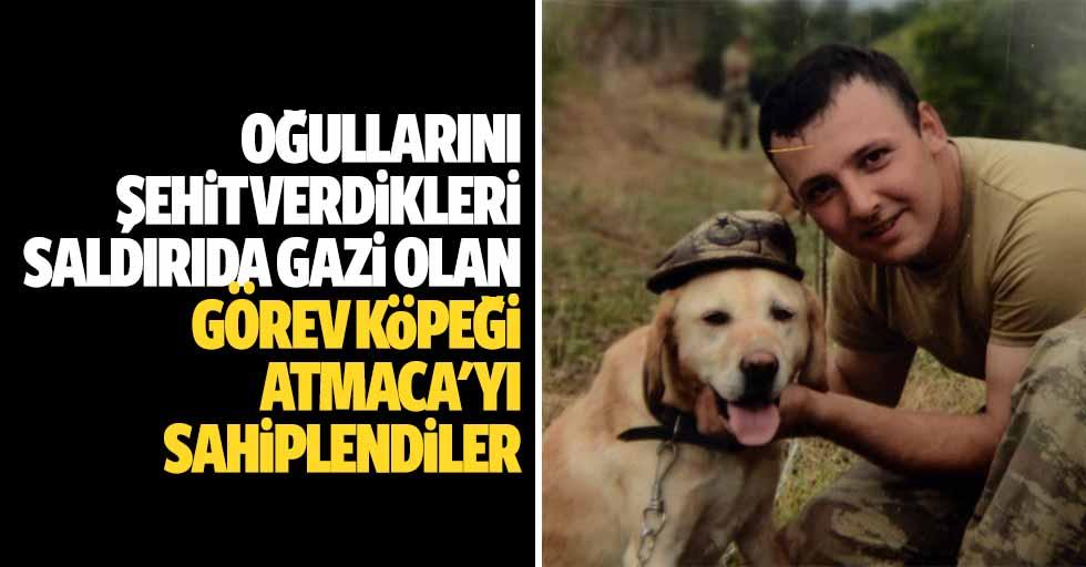 Oğullarını şehit verdikleri saldırıda gazi olan görev köpeği Atmaca'yı sahiplendiler