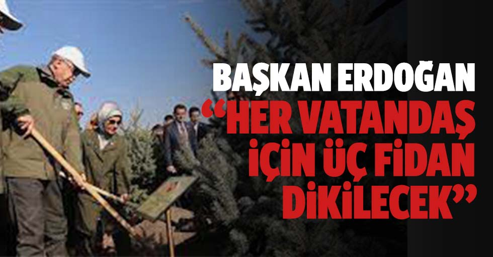 """Başkan Erdoğan, """"her vatandaş için 3 fidan dikilecek"""""""