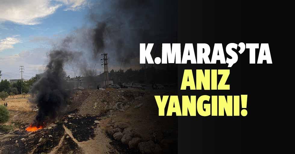Kahramanmaraş'ta anız yangını