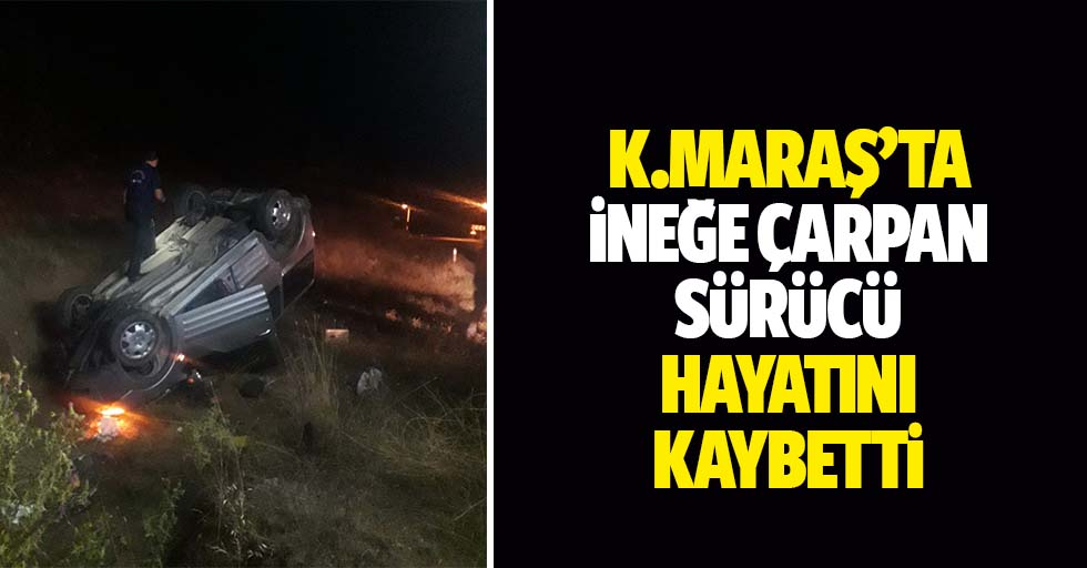 Kahramanmaraş'ta ineğe çarpan sürücü hayatını kaybetti