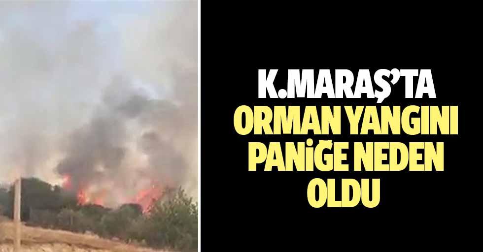 Kahramanmaraş'ta orman yangını paniğe neden oldu