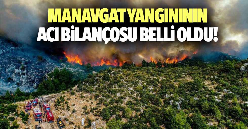 Manavgat yangınının acı bilançosu belli oldu