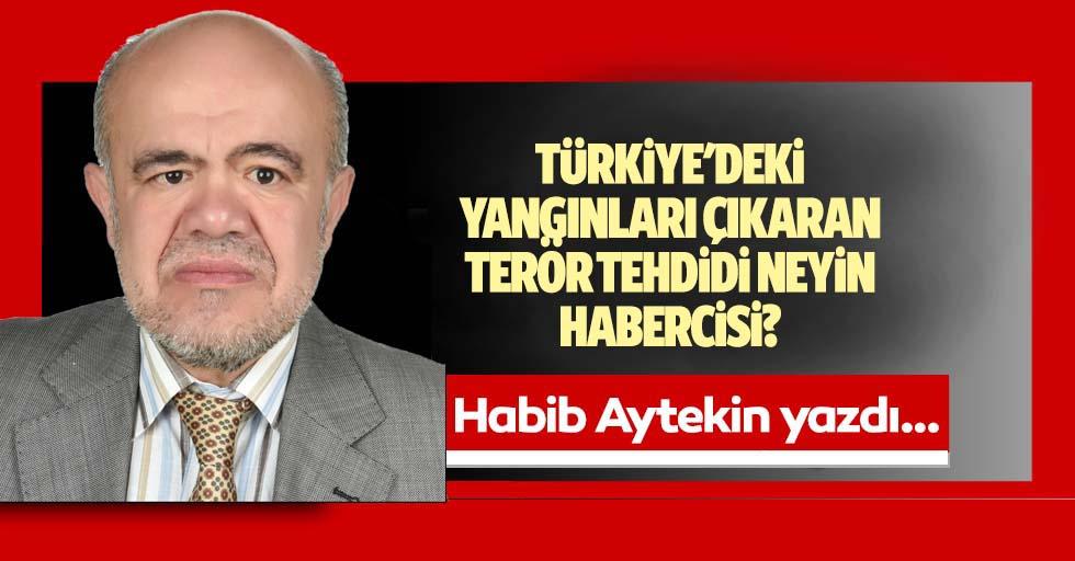 Türkiye'deki yangınları çıkaran terör tehdidi neyin habercisi?