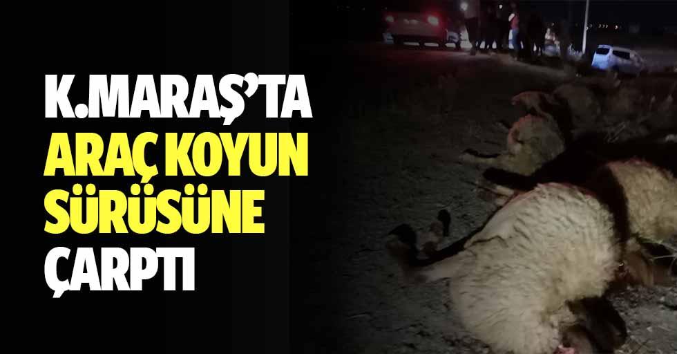 Kahramanmaraş'ta Araç Koyun Sürüsüne Çarptı
