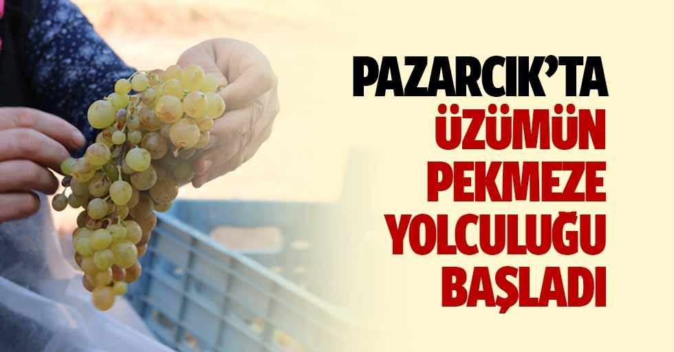 Pazarcık'ta üzümün pekmeze yolculuğu başladı