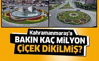 Kahramanmaraş'a milyonlarca çiçek dikildi!