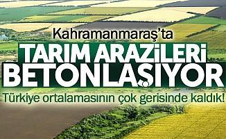 Tarım arazilerimizi hızla yok ediyoruz!