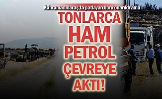 Tonlarca ham petrol çevreye aktı!